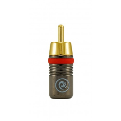 Picture of Planet Waves STRCAP50